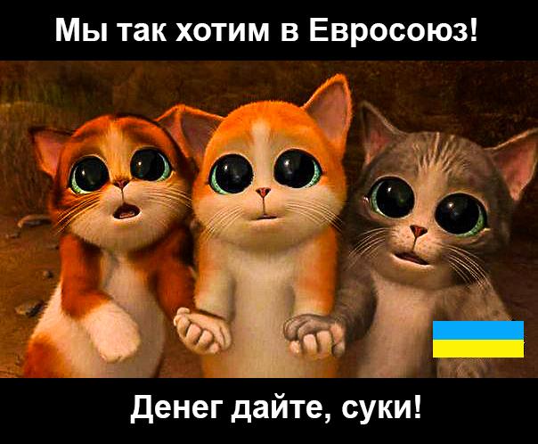 Мысли об Украине