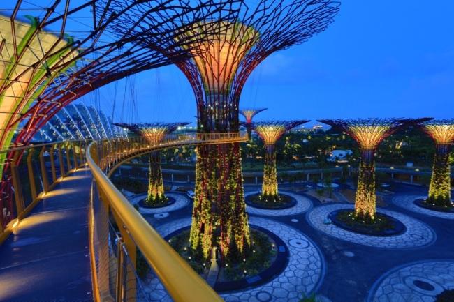 "Сады у залива ""Гаденс бай де Бэй"" в Сингапуре"