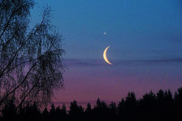 Астропрограммы. Что, где, когда на ночном небе.